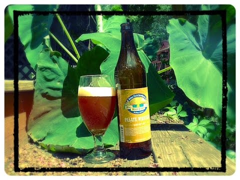 Brew Buddies: Green Flash Brewing Co. Palate Wrecker Imperial IPA review