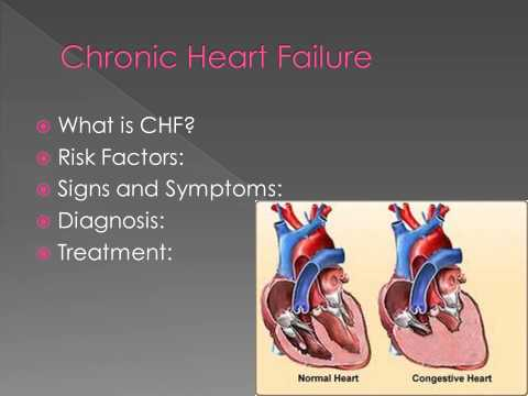 Cardiovascular Diseases and Disorders Lecture 3 Heart Narrated