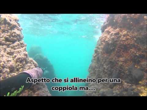 Pescasub Taranto: Tripletta di muggini