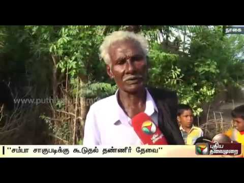 Is-the-water-released-by-Karnataka-enough-to-save-Samba-crop