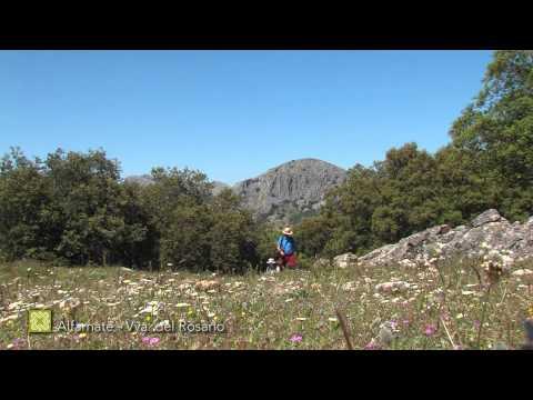 Der Große Wanderweg Málagas. Etappe 11: Alfarnate – Villanueva del Rosario (Deutsch)