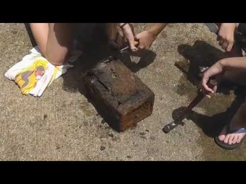 treasure - While I was fishing, my kids found an old military ammo can filled with who knows what and sealed like a time capsule It was buried in silt and sediment. The...