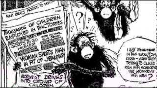 Scopes Monkey Trial - Background