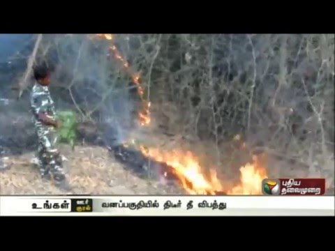 Forest-fire-at-various-places-in-Tamilnadu