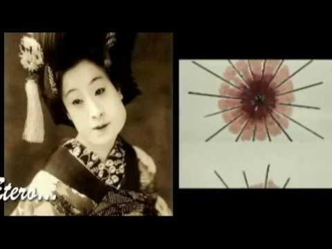 SoloTronik - Takao Simfonio