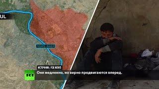 Чёрствая тишина: западные СМИ молчат о цене побед коалиции США в битве за Мосул