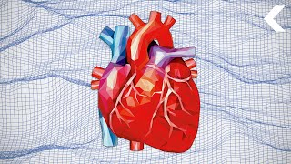 Revolutionizing Heart Surgery With Virtual Reality by DNews