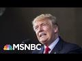 Did President Donald Trump's Labor Secretary Nominee Let Sex Offender Off Easy? | AM Joy | MSNBC