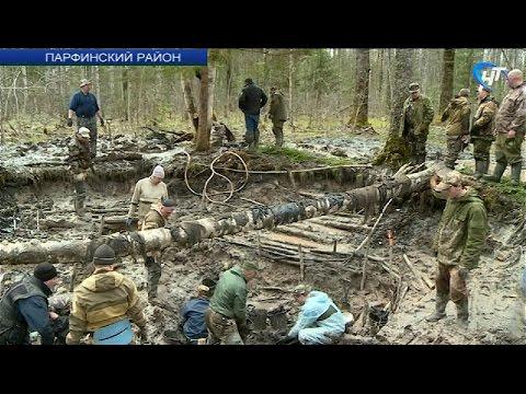 В Парфинском районе поисковики «Долины» эксгумируют тела военнослужащих Красной Армии