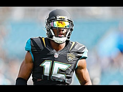 Allen Robinson Highlights 2015 | HD