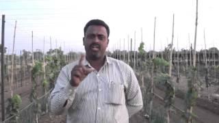 Indapur Govind Narute Blast