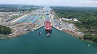 The Panamax Extinction