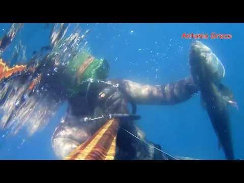 pesca sub Ba: coppiola Dentice e Serra...