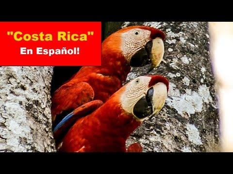 """""""Costa Rica"""" – En español !"""