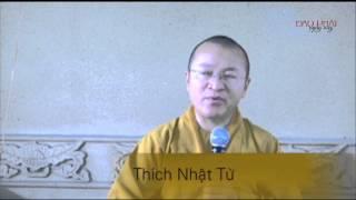 Logic Phật học - Bài 07: Bốn lỗi trái với chủ trương của chân lý - Thích Nhật Từ