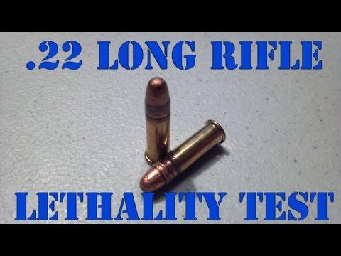 .22LR LETHALITY - 300 Yard Ballistics Test