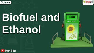 Biofuel And Ethanol
