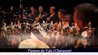 Concierto en honor a Santa Cecilia 2013 en Navalcarnero