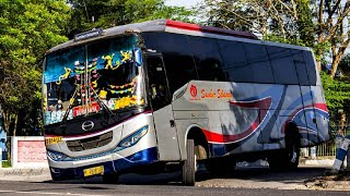 Video 7 PO BUS Terkenal NGEBUT di JAWA MP3, 3GP, MP4, WEBM, AVI, FLV Juni 2018