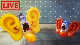 Video 🔴 LIVE LARVA | GIANT EARS | Cartoon Movie | Cartoons For Children | Larva Cartoon | LARVA Official MP3, 3GP, MP4, WEBM, AVI, FLV Agustus 2018
