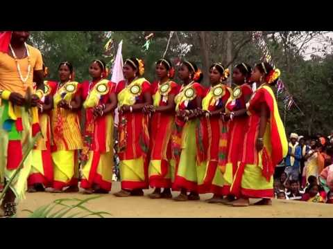 Video Indian Tribal Santali Folk Dance...Santali New Traditaional Dance 2017.... download in MP3, 3GP, MP4, WEBM, AVI, FLV January 2017