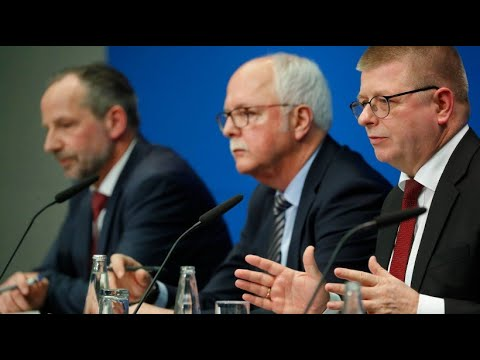 AfD: Der »Flügel« steht wegen Extremismus unter Beobachtung