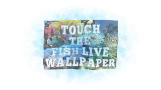 Touch the Fish Live Wallpaper YouTube video