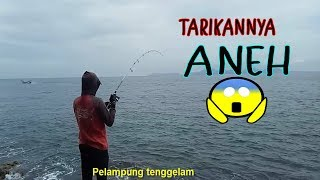 Download Video Ngeri-ngeri gimana.. mancing disini.. MP3 3GP MP4