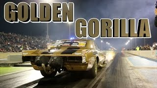 Dewayne Big Daddy Mills GOLDEN GORILLA - EKanoo Racing by  That Racing Channel