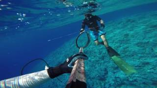 """Spearfishing in the South Pacific around the beautiful island country Niue """"The Rock"""". I was lucky enough to live on the island for..."""