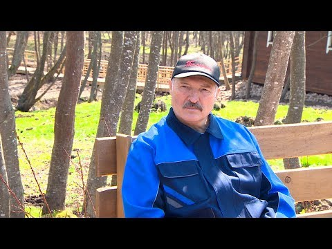Лукашенко о Годе малой родины: это, скорее, трехлетка и только старт