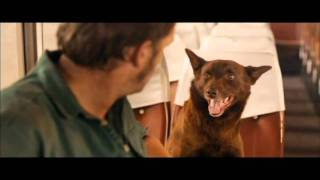 Nonton Fetchtv   Red Dog Movie Trailer  2011  Film Subtitle Indonesia Streaming Movie Download