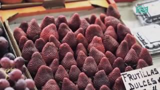 Alimentación saludable - Frutas y verduras.