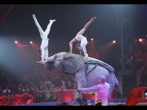 Famille Casselly - 40th Circus Festival Monte Carlo 2016 - Golden Show