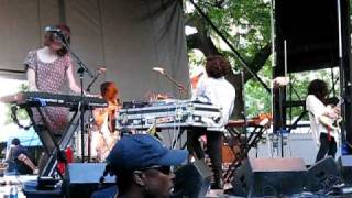 Neon Indian - Ephemeral Artery - Pitchfork 2010 Music Festival