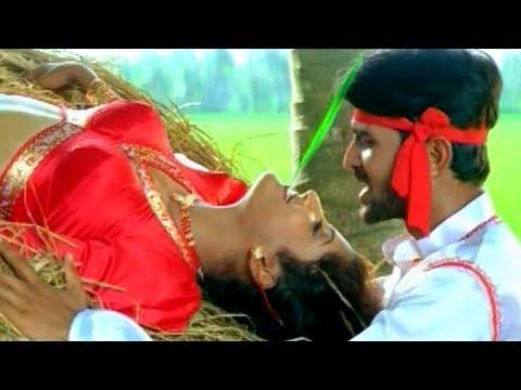 Muthyam Movie Video Songs - Nuzividu