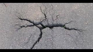 Video Gempa Situbondo Bermagnitudo 6,3, Tidak Berpotensi Tsunami MP3, 3GP, MP4, WEBM, AVI, FLV Desember 2018