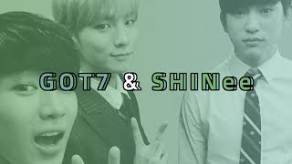Video because GOT7 learnt it from SHINee MP3, 3GP, MP4, WEBM, AVI, FLV Agustus 2018