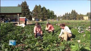 Training Future Farmers