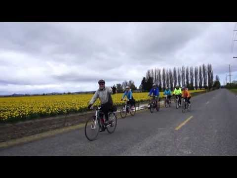 Tulip Pedal Bike Ride