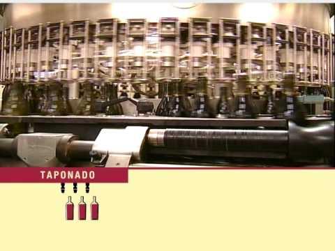 Cómo se elabora el vino argentino