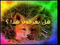 عالم الحيوان
