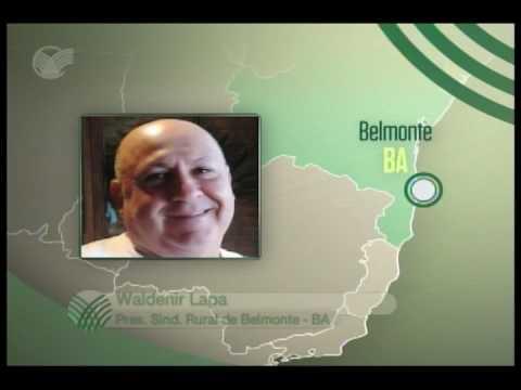 SINDICATO NA TV - Belmonte (BA) / Waldenir Lapa