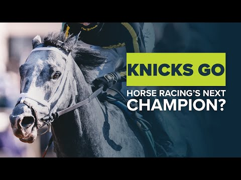 KNICKS GO: IS BRAD COX'S BREEDERS' CUP DIRT MILE WINNER HORSE RACING'S NEXT PEGASUS WORLD CUP CHAMP?