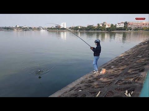 Đi tìm địa điểm câu cá miễn phí ngay tại thủ đô Hà Nội