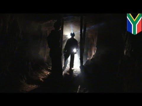 Eight miners found dead in South African gold mine, one still missing