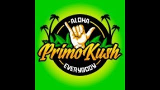 Chillin With Primo #468 - Thanksgiving Special (Live) 7pmPT by Primo Kush