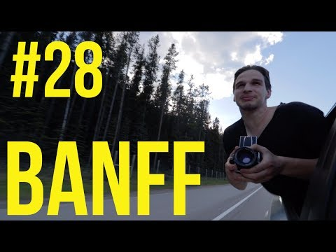 #28 - Chasing Grizzly Bears in Banff National Park