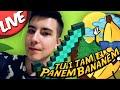 Tu i Tam z Panem Bananem [#LIVE]: ŚWIAT MRÓWEK!