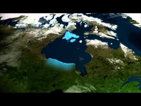 Polar Bears A Summer Odyssey 1 الملحمة الصيفية للدبب القطبية